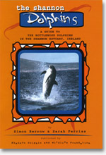 The Shannon Dolphins guide - cover image